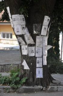 """Drzewa, płoty, przystanki, sklepy są oblepione takimi informacjami o wspominkowych """"godzinkach"""" w intencji zmarłych."""