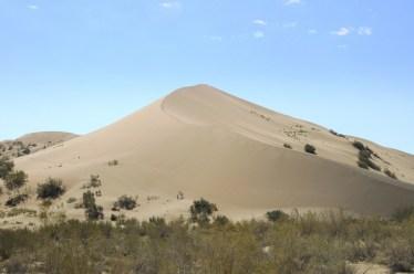 Ta większa wydma (południowa) ma 150 m wysokości i 3 km długości. I śpiewa.