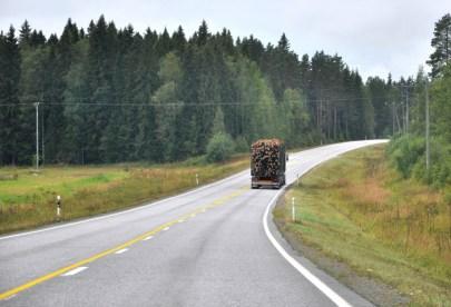 W Finlandii już czuć było jesień, brzozy już żółkły i nagminnie transportowano drzewo.
