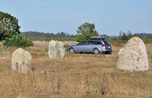 Gdzieś po drodze między licznymi na Olandii kamiennymi kręgami a charakterystycznymi murkami ogradzającymi pastwiska.