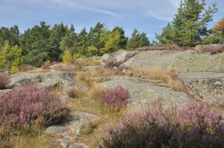 Szwecja ma cholernie skaliste podłoże i to widać wszędzie, na autostradach, w lasach, nad morzem.