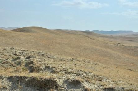 Jedziemy do Dawid Garedży, czyli na granicę z Azerbejdżanem.