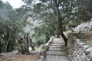 Taką ścieżką pielgrzymów na początek. Droga łączyła sanktuaria po obu stronach grani.