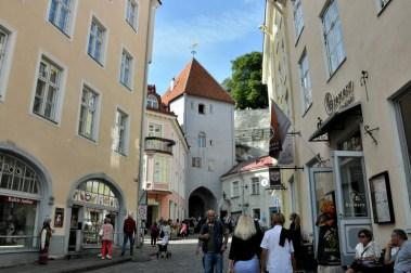 """Uliczka Pikkjalg – """"Długa nóżka"""" i jedna z dwóch bram wprowadzających do Górnego Miasta."""