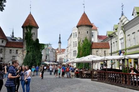 Brama Viru, jedyna wprowadzająca do Starego Miasta.