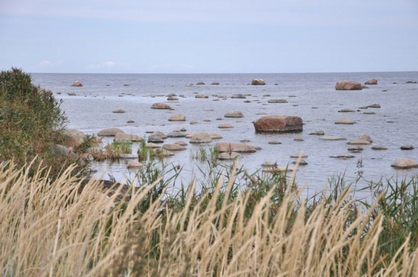 """Rejon jest nazywany """"kamiennym polem""""."""