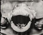 catfish-bw-bw