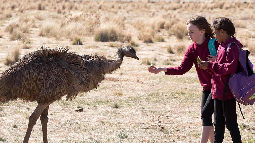 emu runner australia