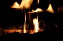Controlled burn (800x533)