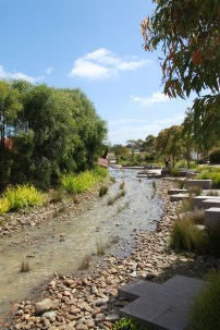 Native garden with creek