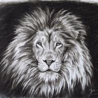 Löwe Kohlezeichnung