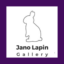 Jano lapin gallery with bunny (4)
