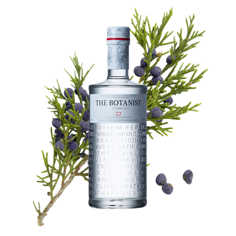 JAN | Jan Hendrik van der Westhuizen | The JAN Summer Cup made with The Botanist Gin