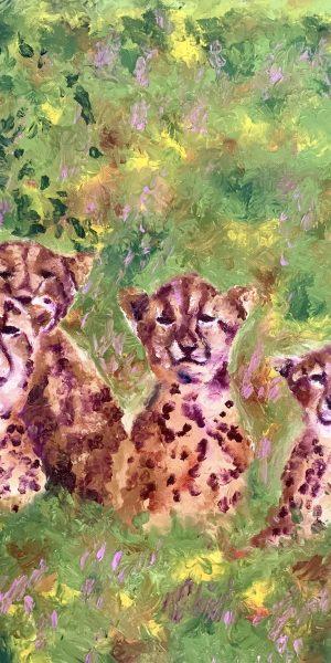 Tuli cubs