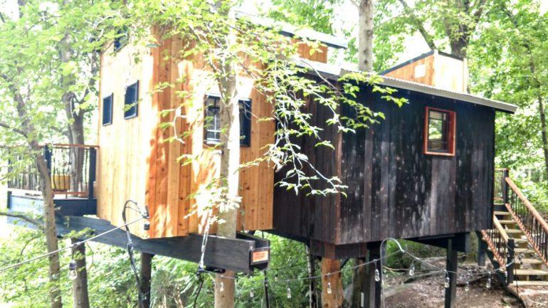 exterior Dove Men+Care Elements Treehouse