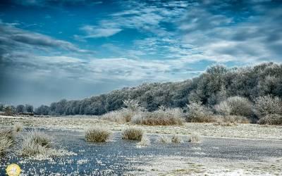 Landgoed Ennemaborgh, Midwolda, rijp, winter