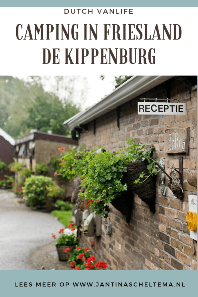 kamperen in friesland