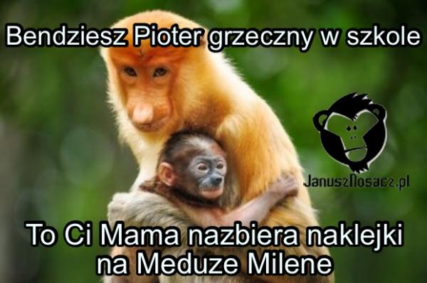 To Ci Mama nazbiera naklejki na Meduze Milene... Bendziesz Pioter grzeczny w szkole