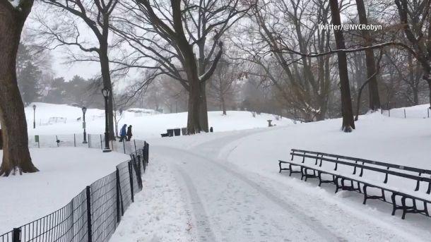 Winter wonderland in Central Park, New York, 14 maart (bron: @NYCRobyn)