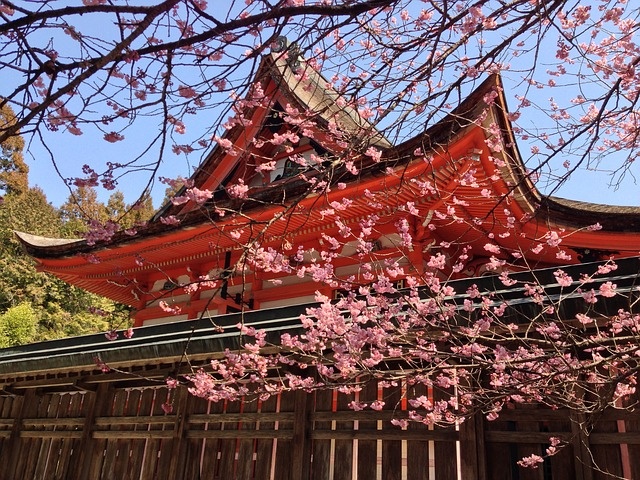 Shrine_Cherry-805688_640