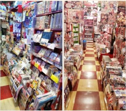 Lammtarra_inthe_Shop_Akihabara
