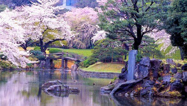 小石川後楽園①