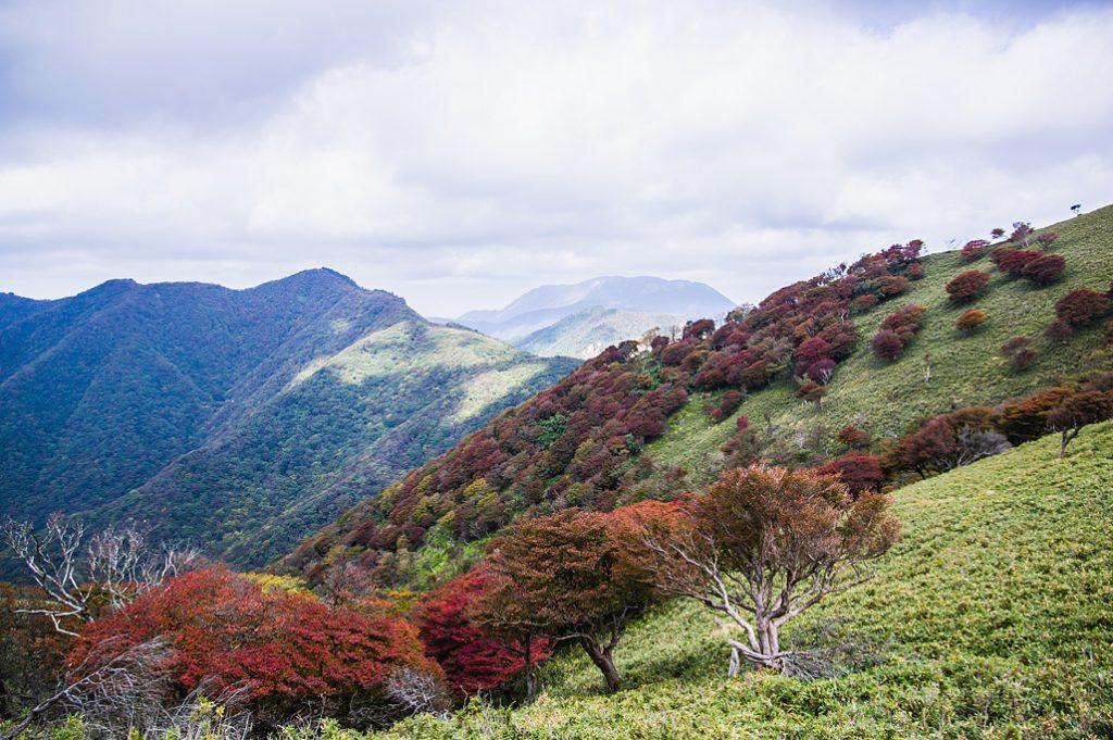 竜ヶ岳(三重県/鈴鹿山脈)