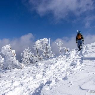 雪質も程よく締まり、気持ちよく歩けます。