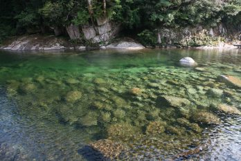 千頭川の渓流