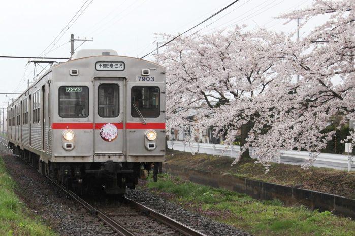 十和田観光電鉄線