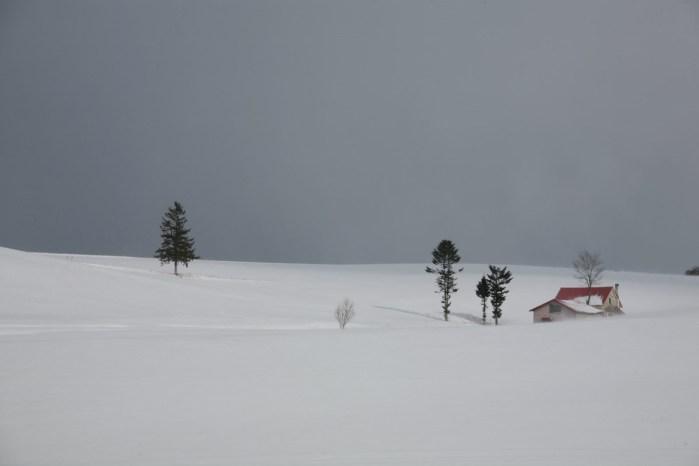 雪のある風景
