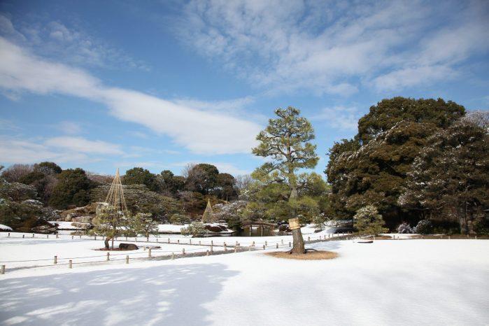 東京雪景色2