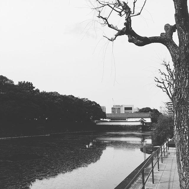 皇居のお堀 Koukyou no ohori#japan #tokyo #koukyo - from Instagram