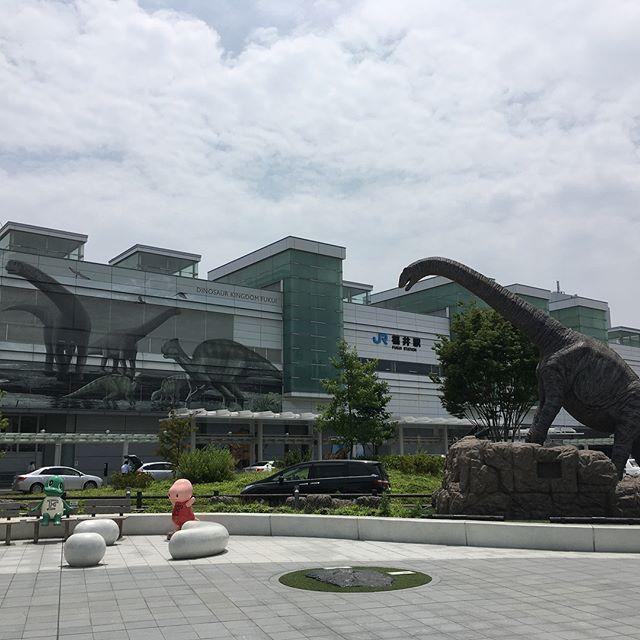 福井県 Fukui prefecture #japan #fukui #heisenjihakusanjinjya #jinjya #dinosaurs #museum - from Instagram