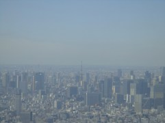 Little Tokyo Tower