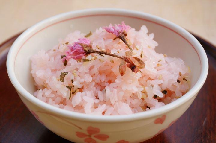 Cherry Blossom さくら 桜 サクラ Sakura