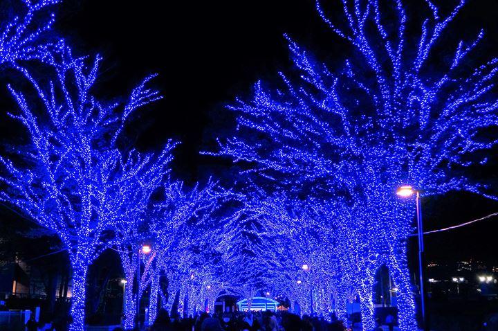 青の洞窟 SHIBUYA - Aonodokutsu 青の洞窟 Blue Cave Illumination in Shibuya Tokyo 東京 渋谷