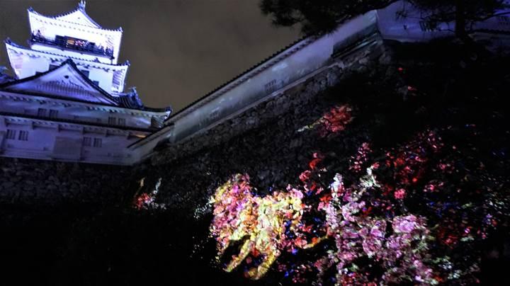 teamLab, Kochi Castle チームラボ 高知城