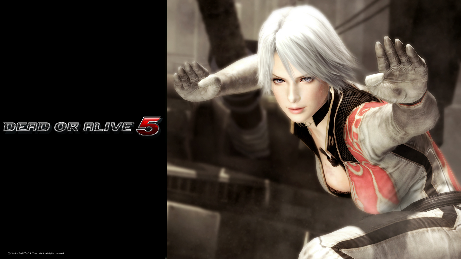 Vita Specific Features For Dead Or Alive 5 Plus