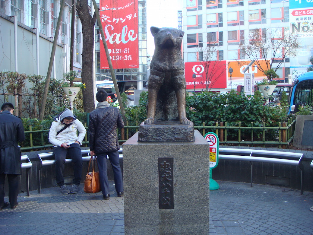 Hachiko Finally Reunited With Owner