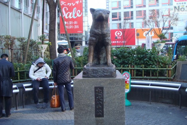 A Look At Hachiko's New Statue
