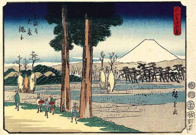Path Through Rice Fields at Omori