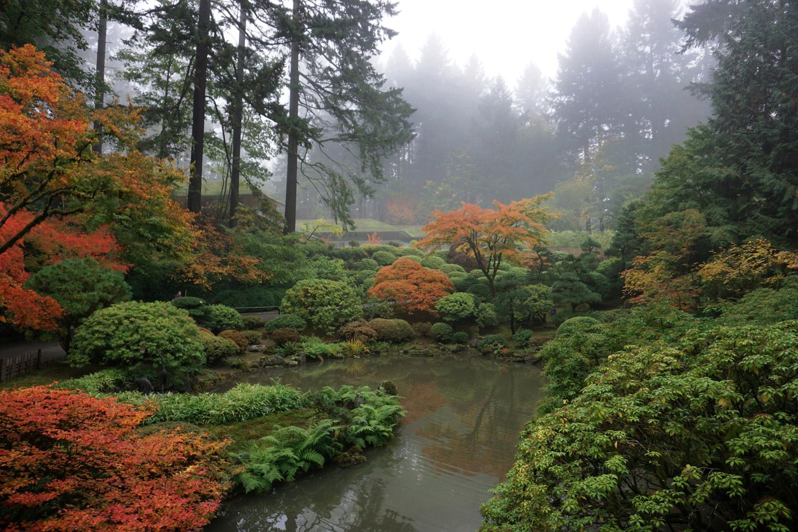 Images Art Autumn Fall Clip