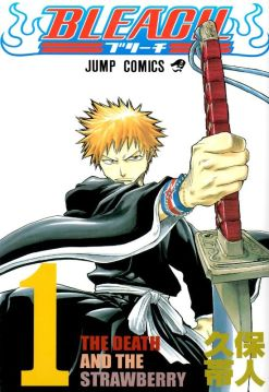 Bleach Front Cover