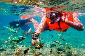 Snorkeling Objek Wisata Gili Trawangan