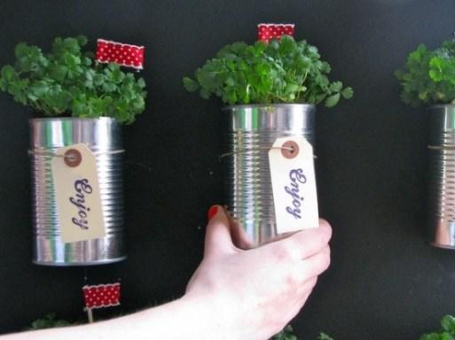 mini-horta-com-latas-de-aluminio-8-7886495-433