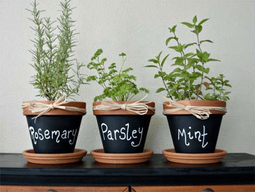 mini-horta-vaso-barro