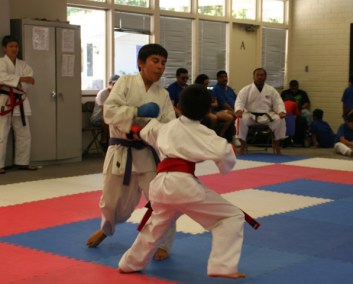 Gensei Ryu 2015 Kumite Alexis