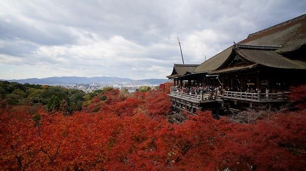 Que Visiter A Kyoto