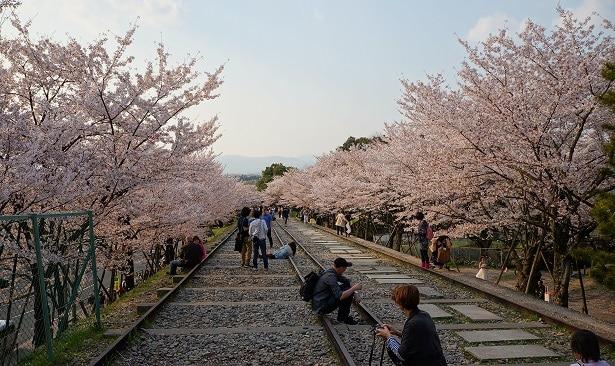 site touristique à kyoto